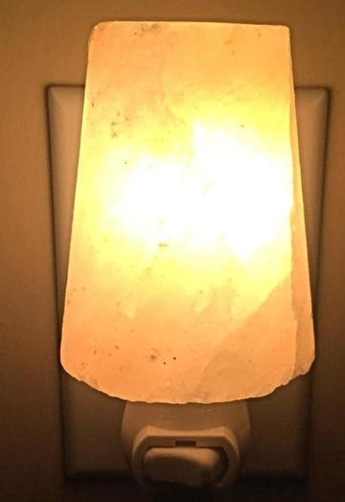 Himalayan Crystal Salt Lampshade Night Light - The House of Awareness