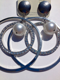 Silver Stone and Pearl Earrings - The House of Awareness