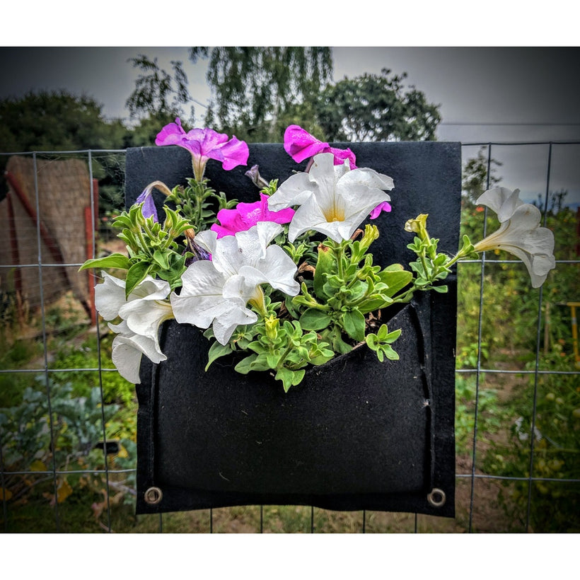 Indoor and Outdoor Planters and Pots made from Recycled PET Plastic Bottles