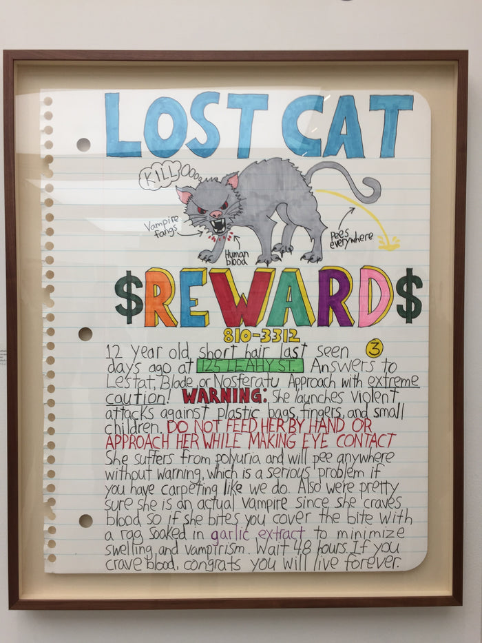 Lost cat reward