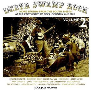 Various Artists ♦ Delta Swamp Rock 2 (2LP)