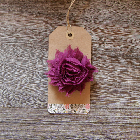 Shabby Rose in Purple Plum