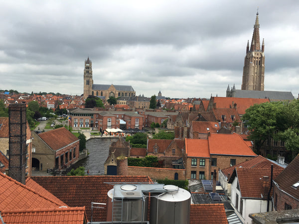 View of Bruges from atop the Brewery de Halve Maan