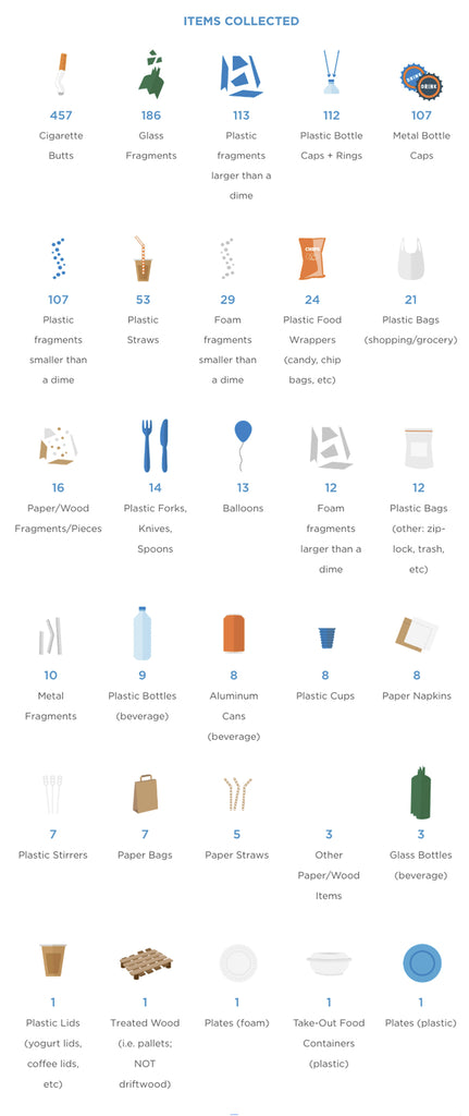 Infographic showing the breakdown of items collected by the Tidal New York team on that one fall day