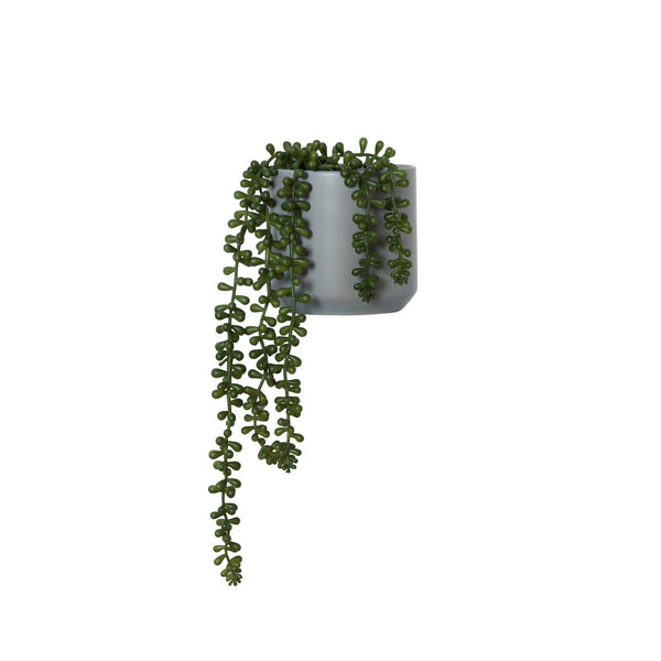 Faux Plant - Small String of Pearls