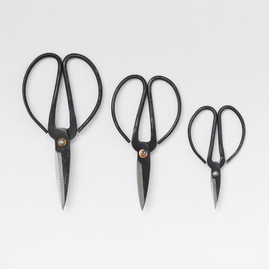 COMING SOON - Herb Scissors - Set of 3