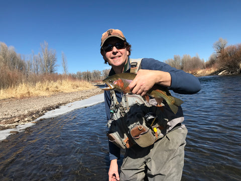 A March 3rd Rainbow Trout on the Gunnison River