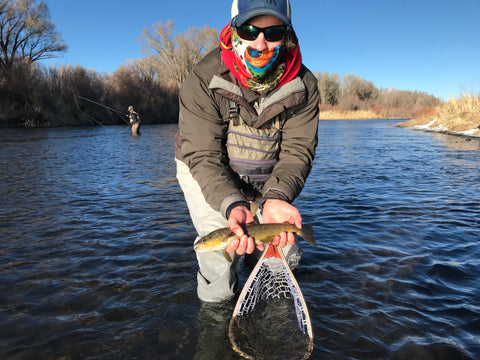 Guided Fly Fishing on the Gunnison River