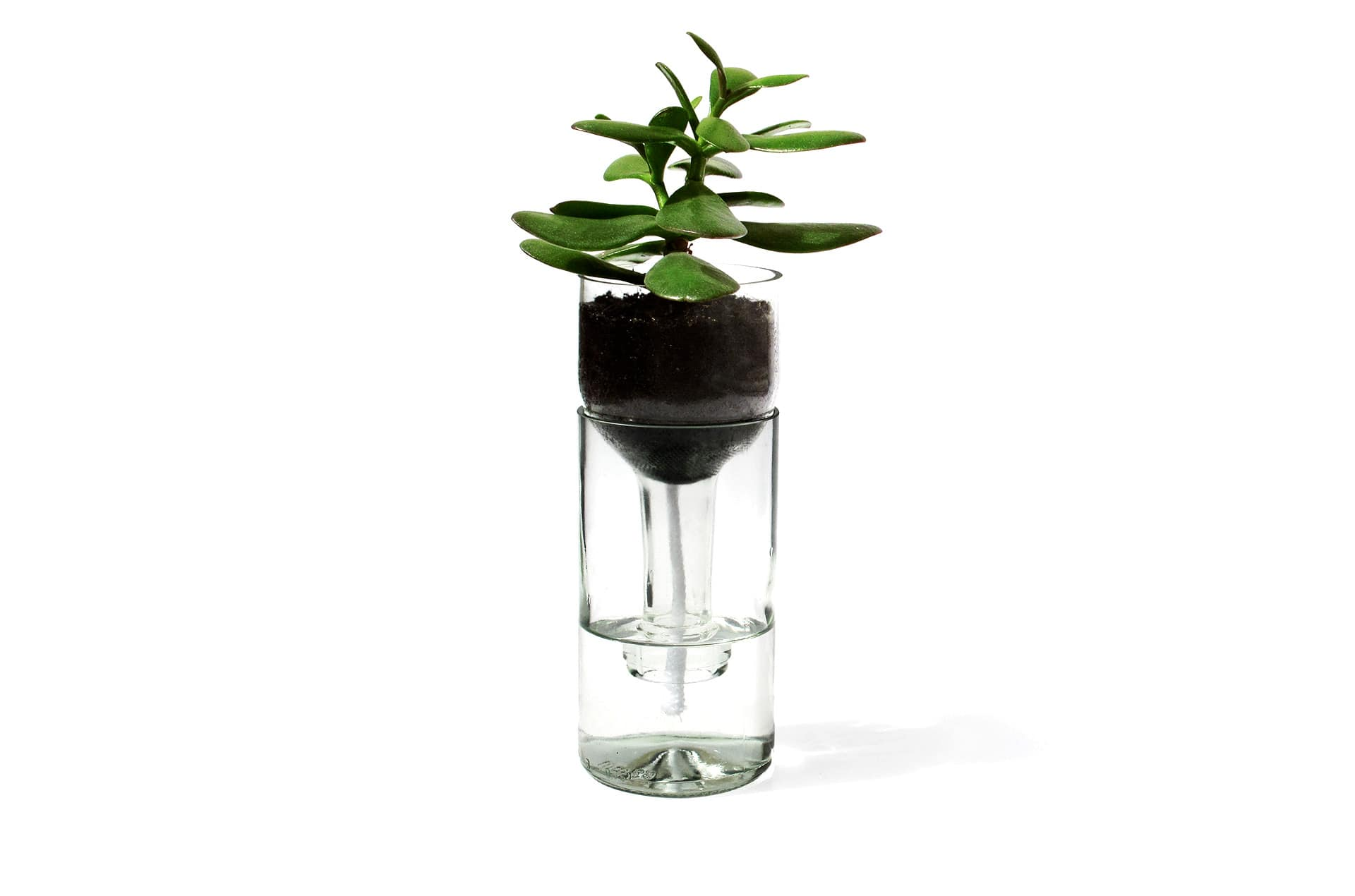 Jardinière autonome Watering Bottle by SideBySide-1-PARIDEO design durable