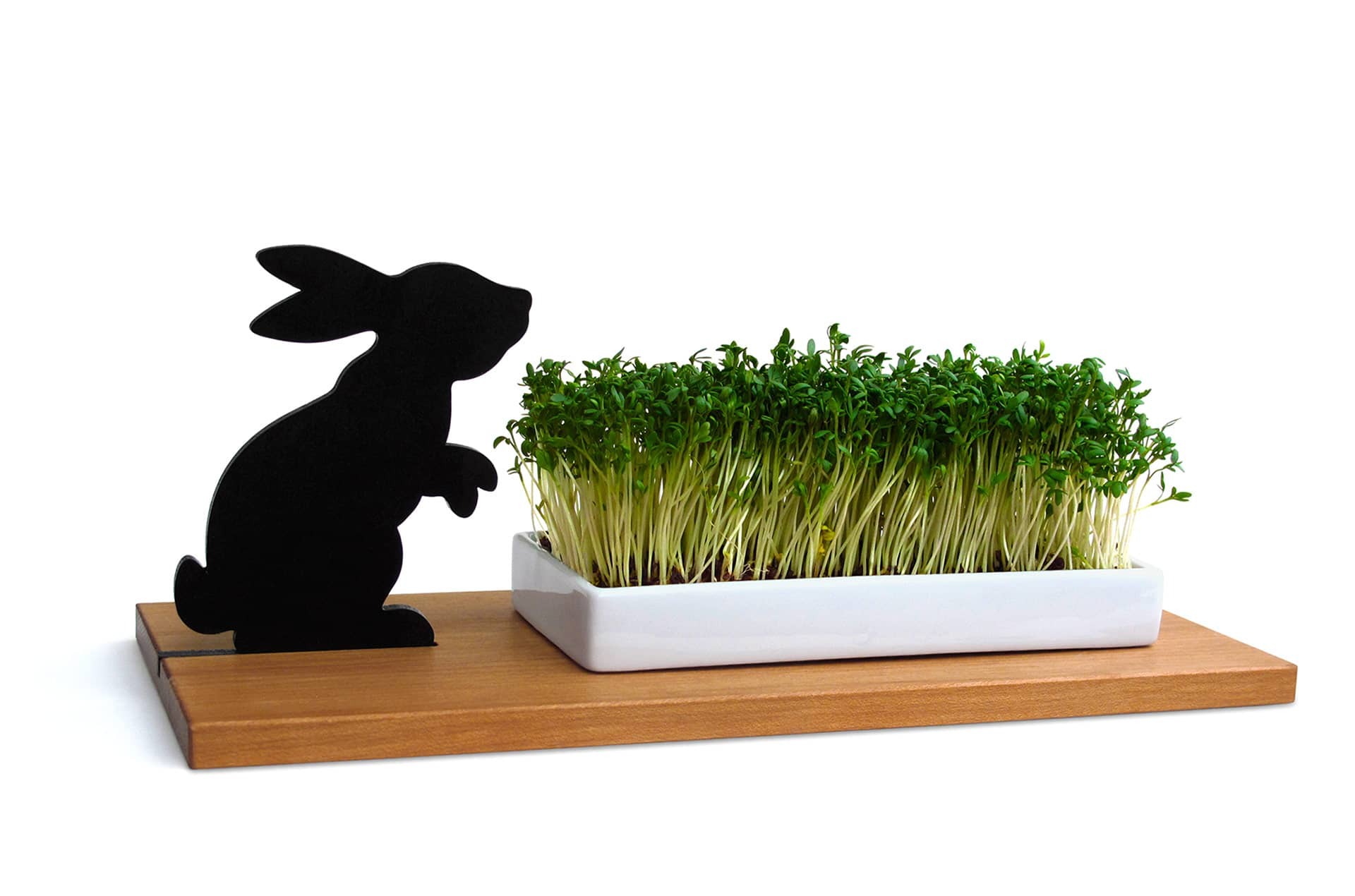 Planchette lapin, SMART 'N' GREEN-1-PARIDEO design durable
