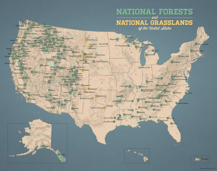 USA National Forests & Grasslands map print - tan & slate blue