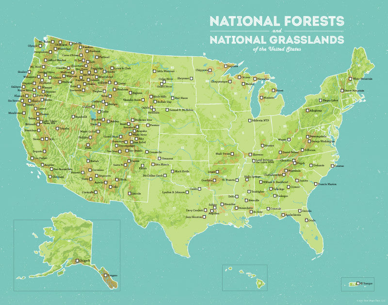 USA National Forests & Grasslands map print - green & aqua