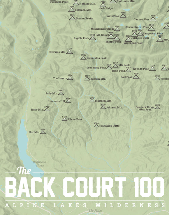 Seattle, Washington 'Back Court 100' Map Print - sage