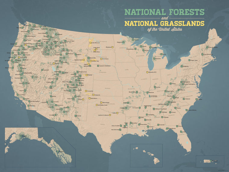 USA National Forests & Grasslands Map Poster - tan & slate blue