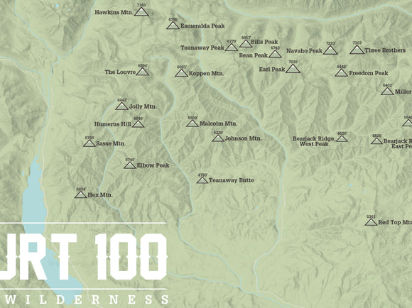 Wenatchee, Washington 'Back Court 100' Map Poster - sage