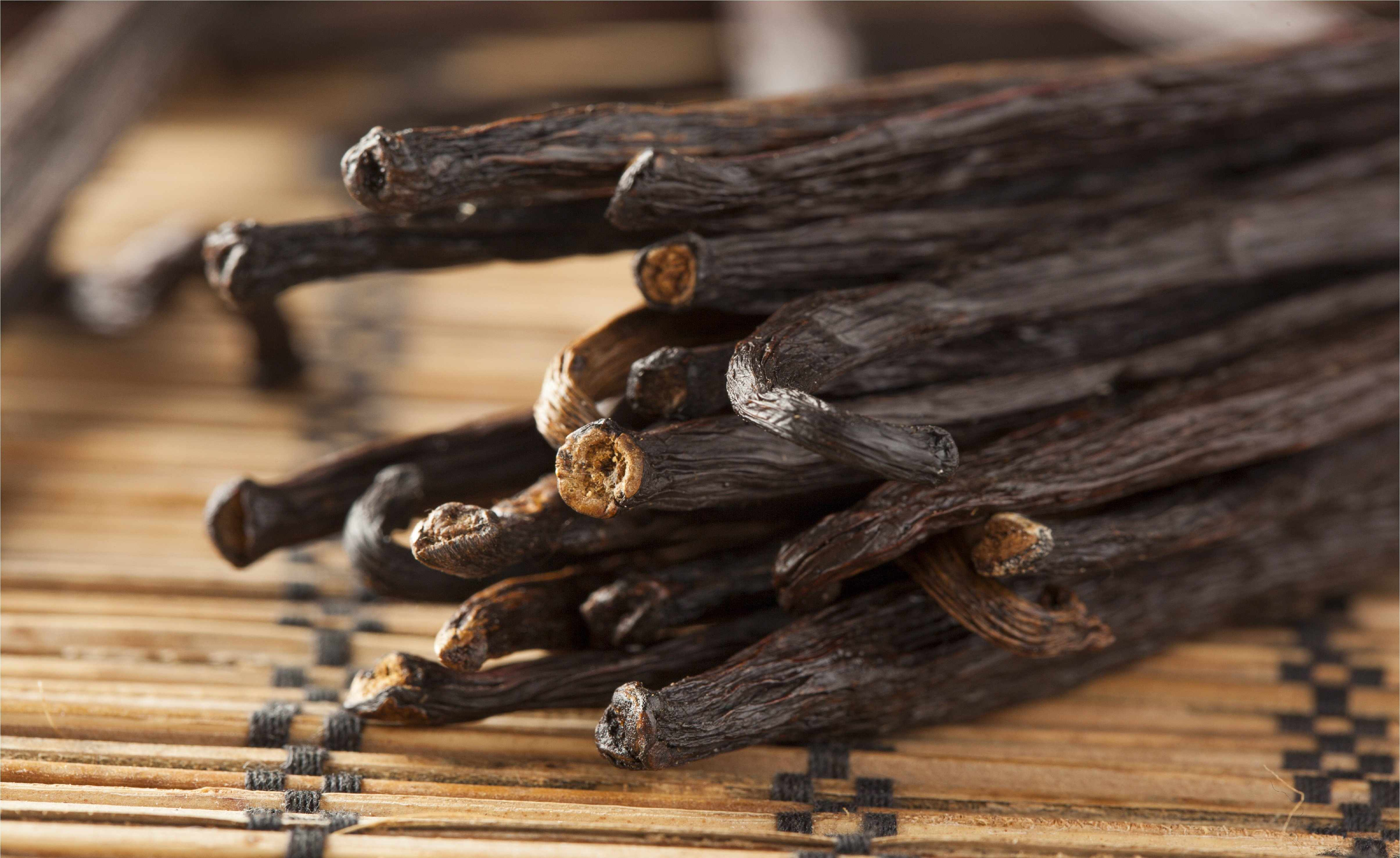 Tahitian Vanilla Beans - Whole Grade B Pods for Extract Making - Vanilla Bean Kings