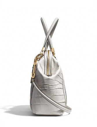 Coach Madison Domed Satchel in Exotic Stripe Leather