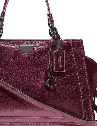 Coach Metallic leather Dreamer 21 Satchel