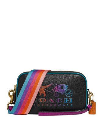 Coach Rexy and Carriage Sadie Crossbody