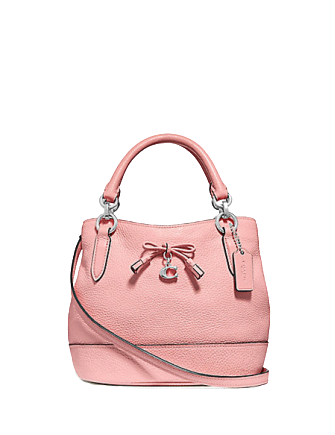 Coach Micro Ally Bucket Bag