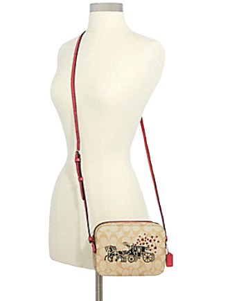 Coach Mini Camera Bag in Signature Horse and Carriage Heart Print