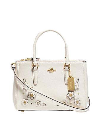 Coach Mini Surrey Carryall With Floral Applique