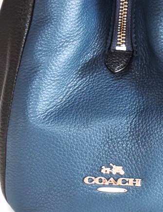 Coach Phoebe Madison Exotic Python Shoulder Bag