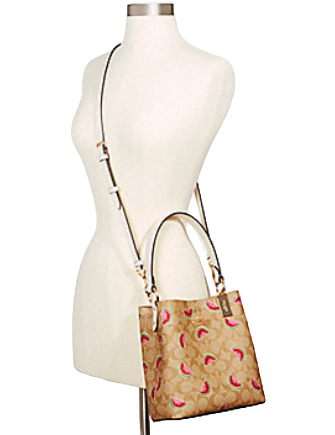 Coach Small Town Bucket Bag With Watermelon Print