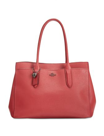 Coach Bailey Large Carryall Tote