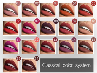 Beauty Box NZ 21 Colour Matte Lipstick Range
