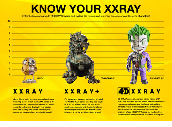 Do you know your XXRAY well enough?