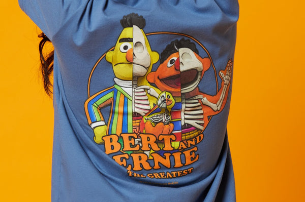 Sesame Street Lifestyle I.T. Collection Lookbook