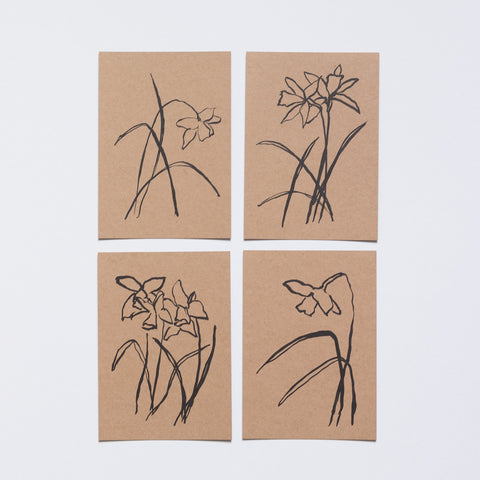 lucy auge postcards daffodils garden objects