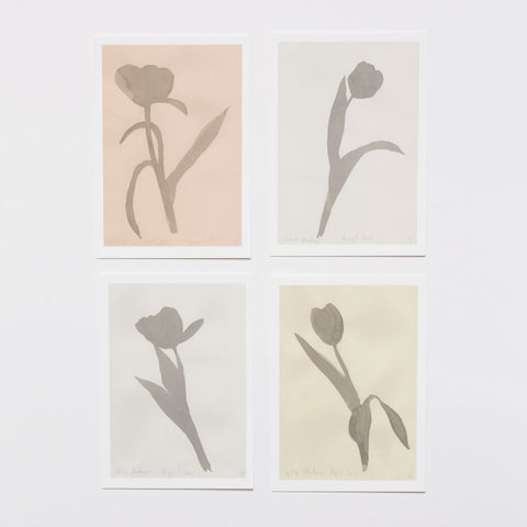 lucy auge postcards shadow tulips garden objects
