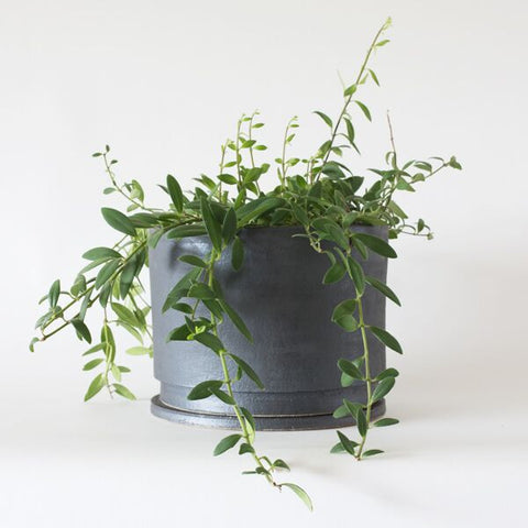 anchor ceramics planter no.32 | large