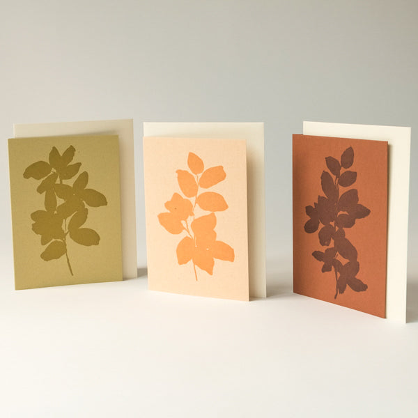 esme winter x lucy auge | letterpress cards