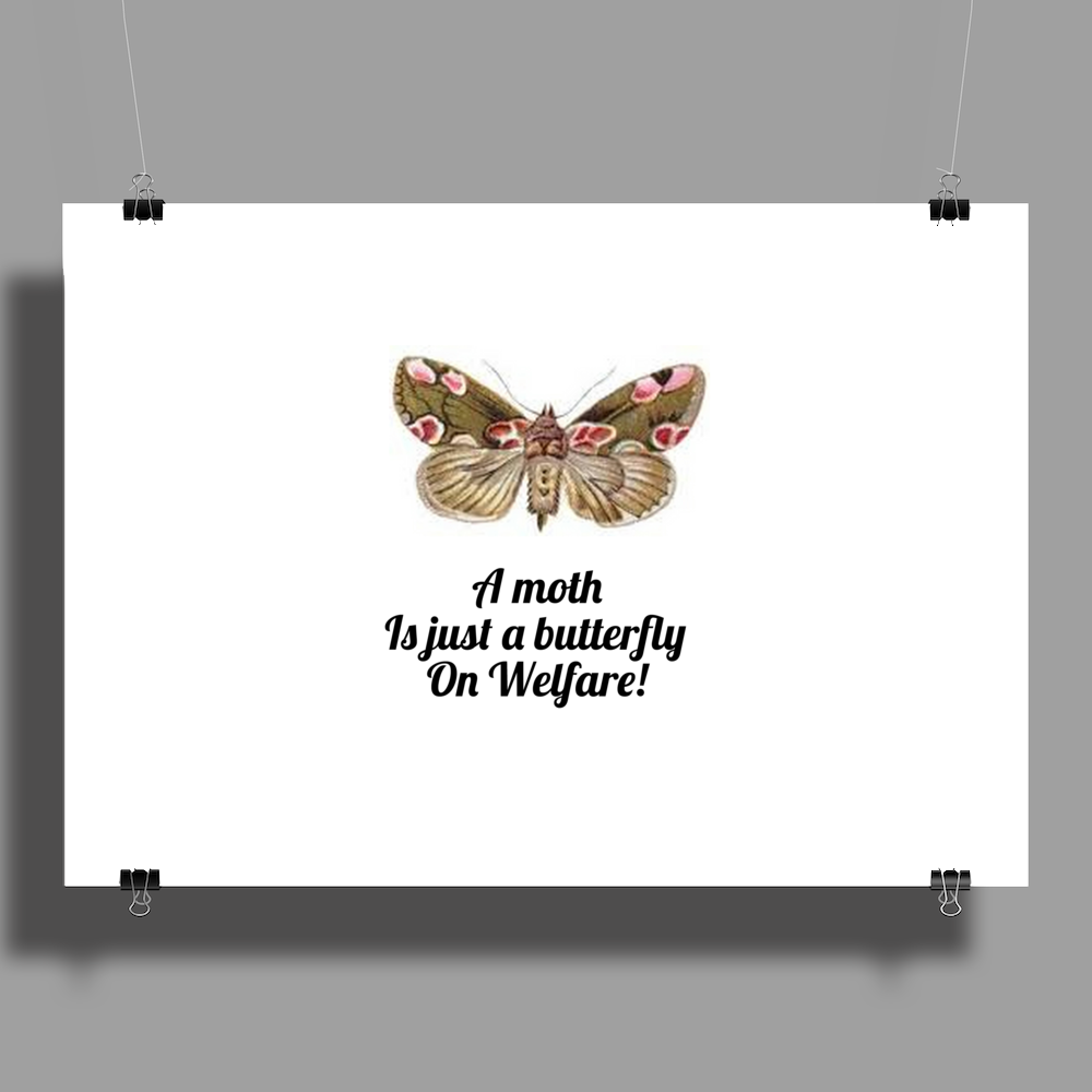 A Moth is just a Butterfly on welfare  Poster Print (Landscape)