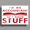Accountants know stuff - red Poster Print (Landscape)