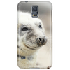 AMAZING WILDLIFE - SEAL Phone Case