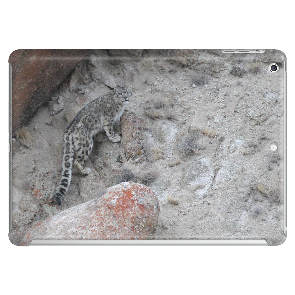 AMAZING WILDLIFE - SNOW LEOPARD Tablet (horizontal)