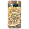 Ammonite, a Prehistoric Snail Phone Case