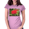 Australian Red BottleBrush Womens Fitted T-Shirt