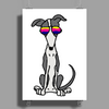 Awesome Funny Grey and White Greyhound Dog in Sunglasses Poster Print (Portrait)