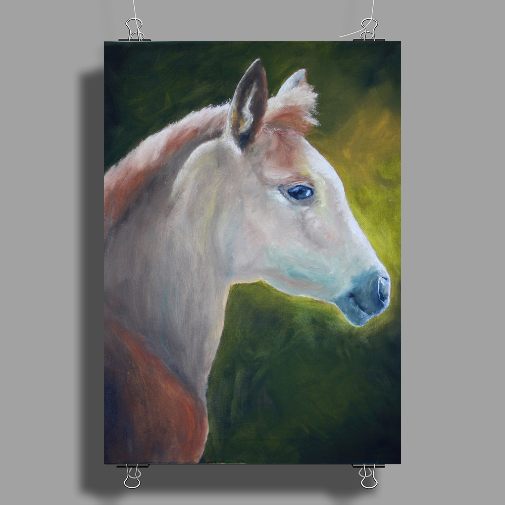Filly Poster Print (Portrait)