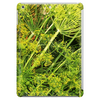 Fresh Dill Tablet (vertical)