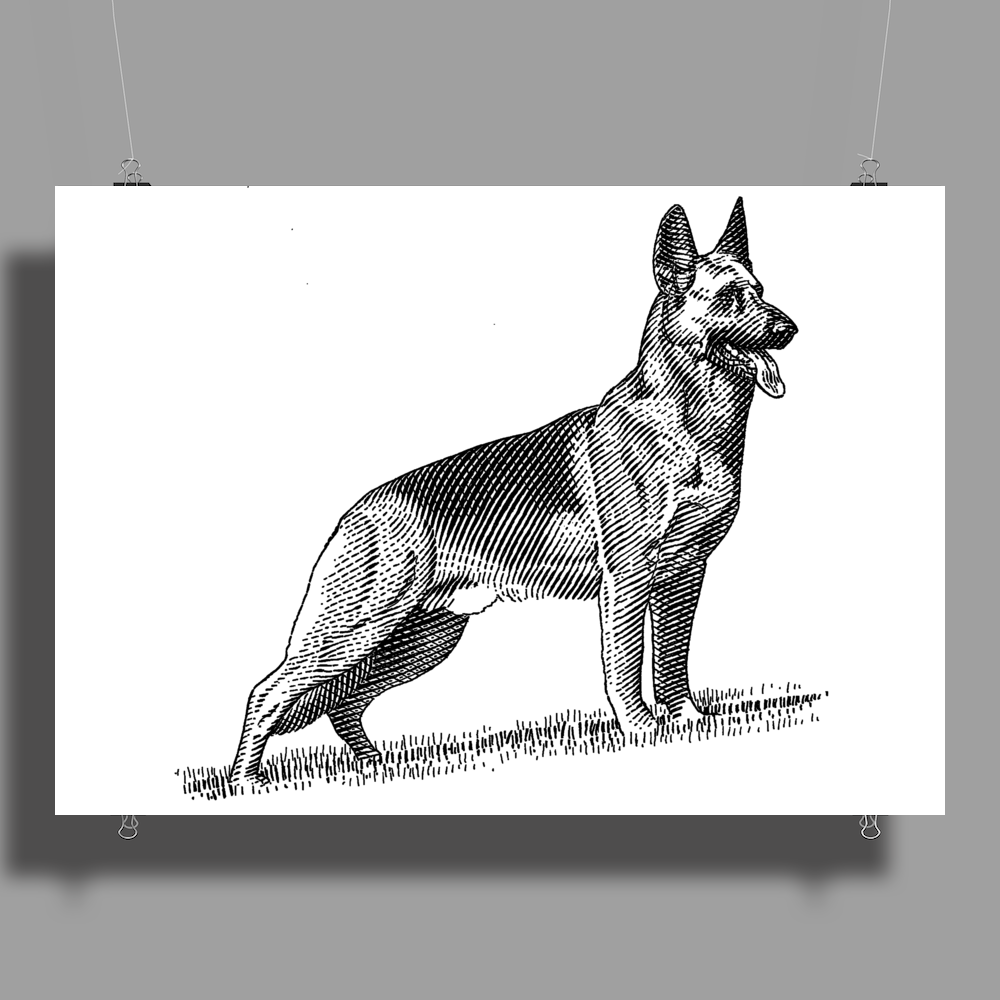 German Shepherd, Dog Breed Illustration Poster Print (Landscape)
