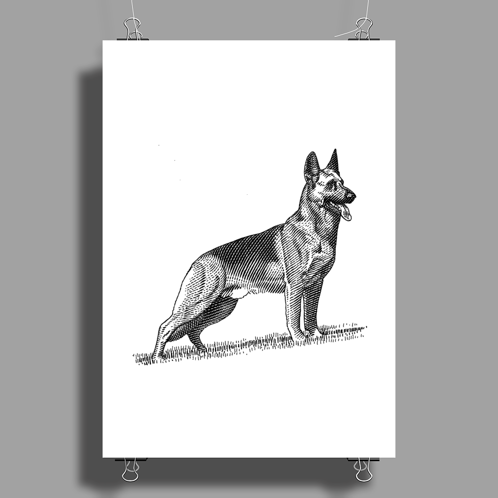 German Shepherd, Dog Breed Illustration Poster Print (Portrait)