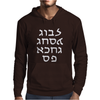 Go F Yourself Hebrew Letter Upside Down Funny Mens Hoodie