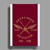 Harry potter gryffindor quiddtch team Poster Print (Portrait)