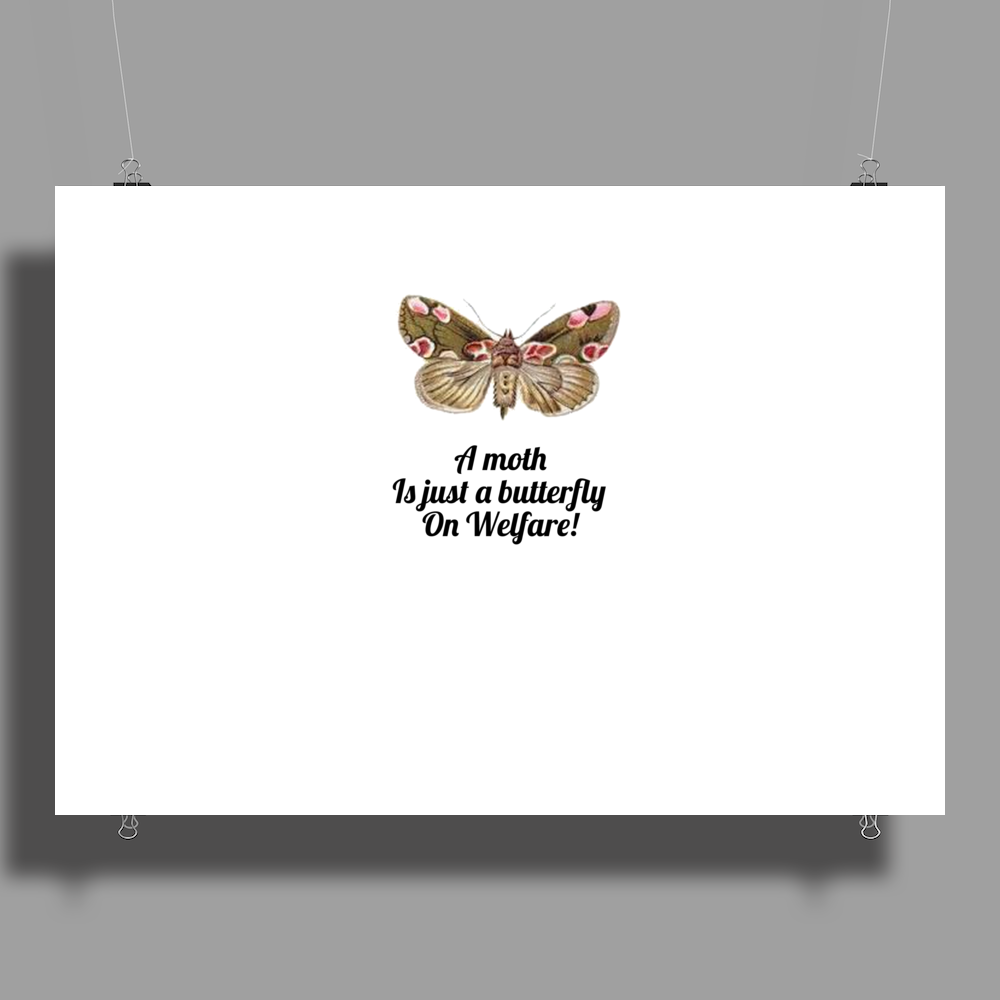 HUMOUR FUNNY A MOTH IS JUST A BUTTERFLY ON WELFARE Poster Print (Landscape)